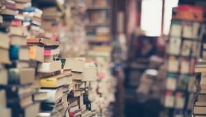 bisnis untuk pecinta buku