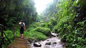 Keindahan Alam sekitar Curug Benowo