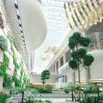 Beberapa Hal yang Bisa Dilakukan di Changi Airport