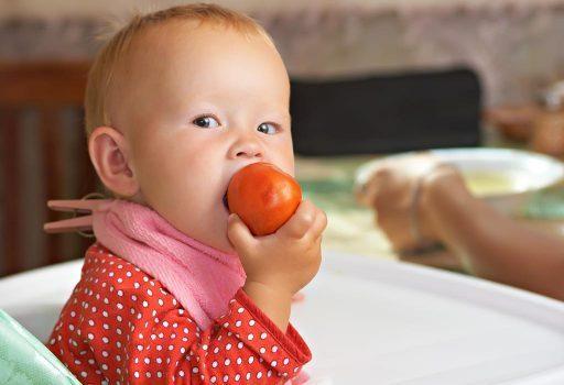 manfaat tomat untuk si kecil